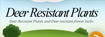 dee resistant bulbs